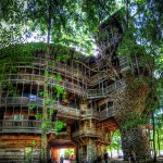 La plus grande cabane en bois!