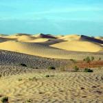 neorizons_dunes