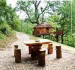 La_cabane_dans_arbre_neorizons