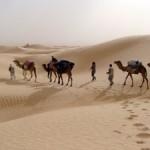 caravane_desert_tunisie_patricia_penot