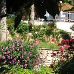 jardin_La_Terre_d'Or_Neorizons