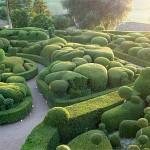 jardins_neorizons