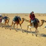 Terugkeer uit de woestijn