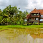 neorizons-Ubud-Bali