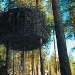 hotel-in-tree-2