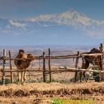 terre_des_etoiles_maroc7